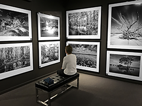 Black And White Art Gallery