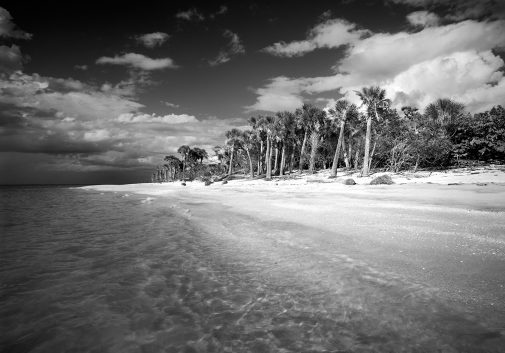 Cayo Costa Island 1
