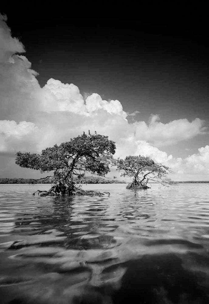 Gaskin Bay 7