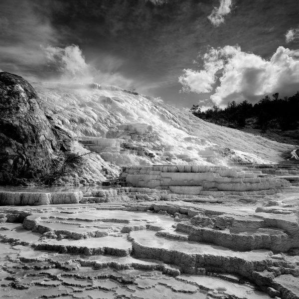 Mammoth Hot Springs Terr 8