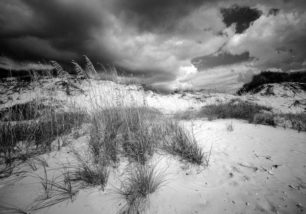 St Joe Dunes 3