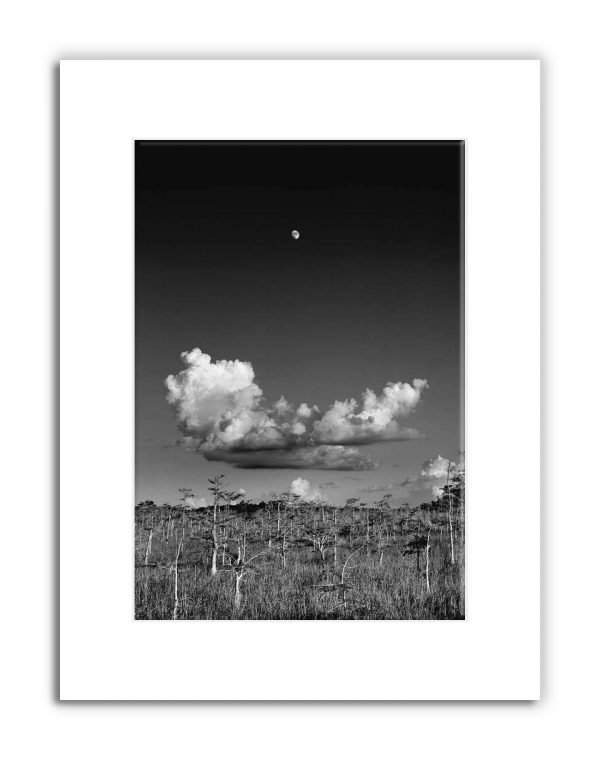moonrise-matted