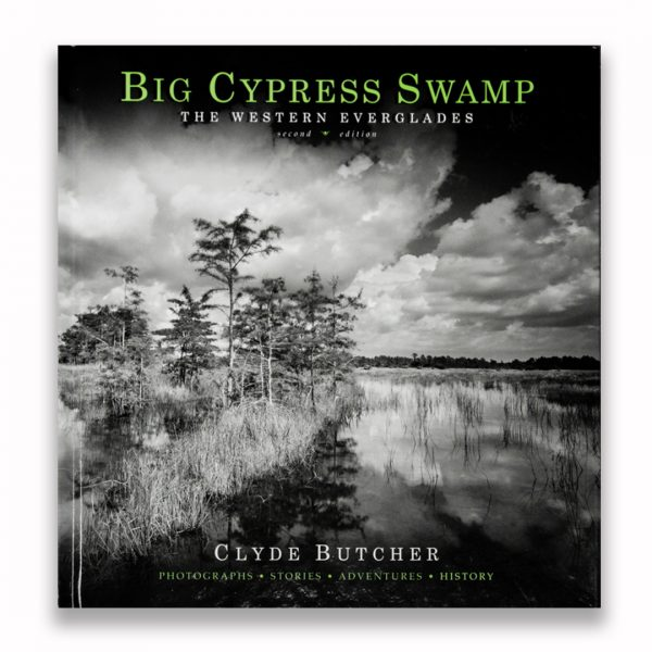 Big-Cypress-Swamp