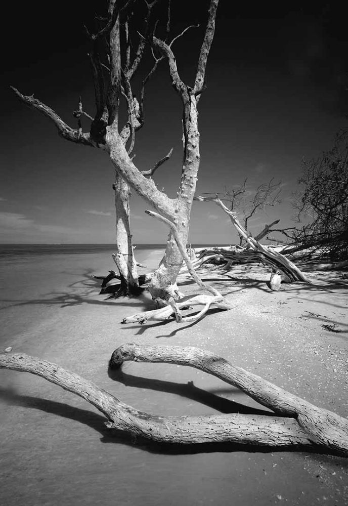 Cayo Costa Island 2