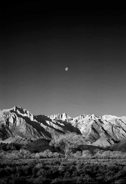 Moon Over Mt. Whitney vertical