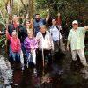 Eco Swamp Walk Group