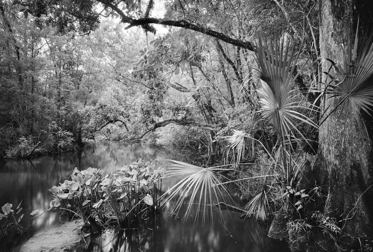 Billies Bay