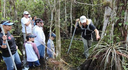 eco swamp walk tour