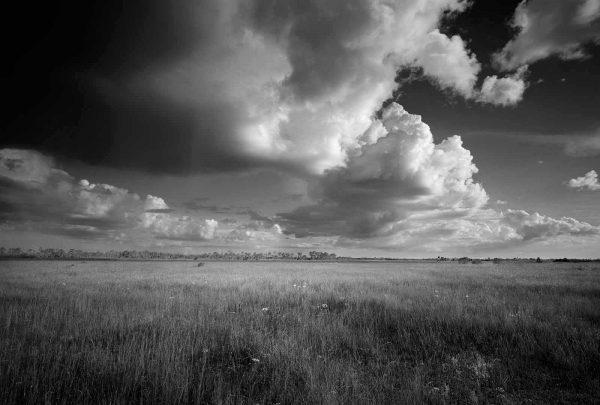 Everglades Restoration