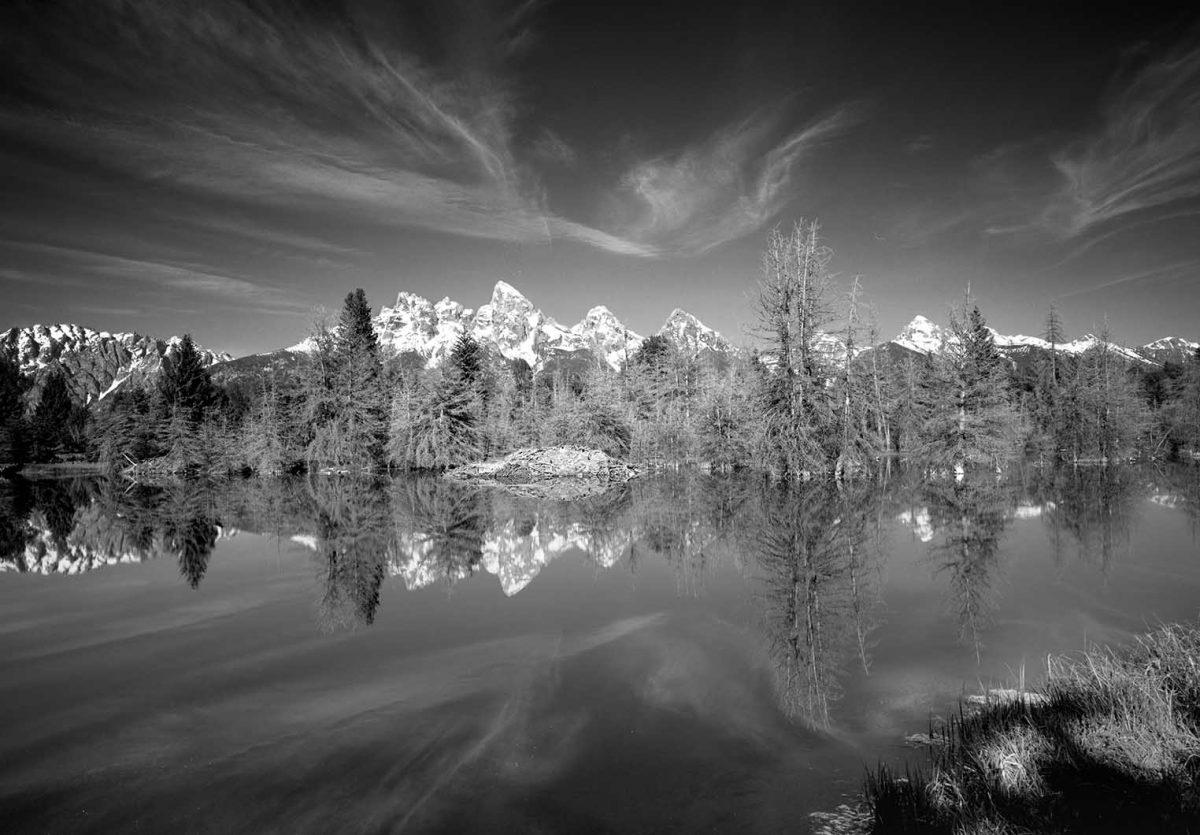 Teton Beaver Pond