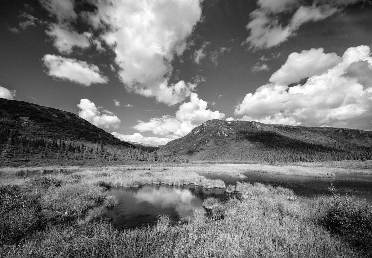 Wonder Lake Pond