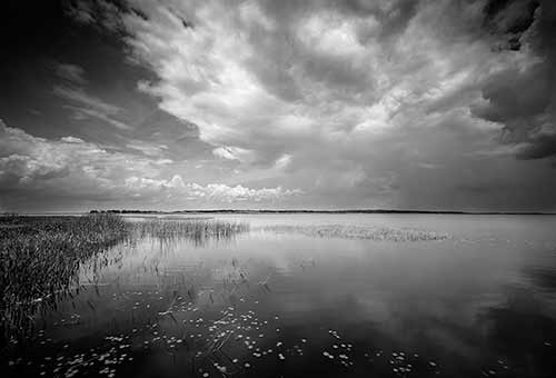 Lake Kissimmee State Park Collection