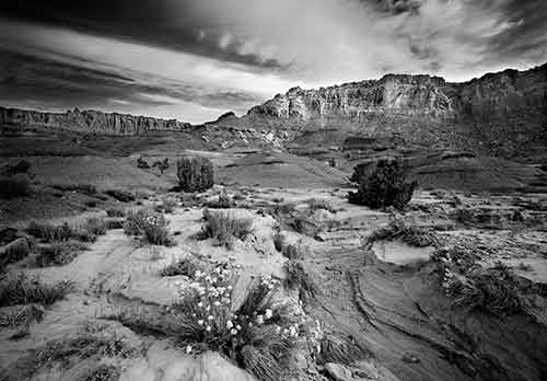 Canyonlands National Park Collection