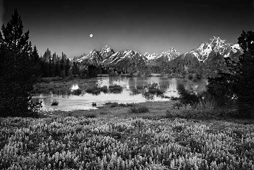 Grand Teton National Park Collection