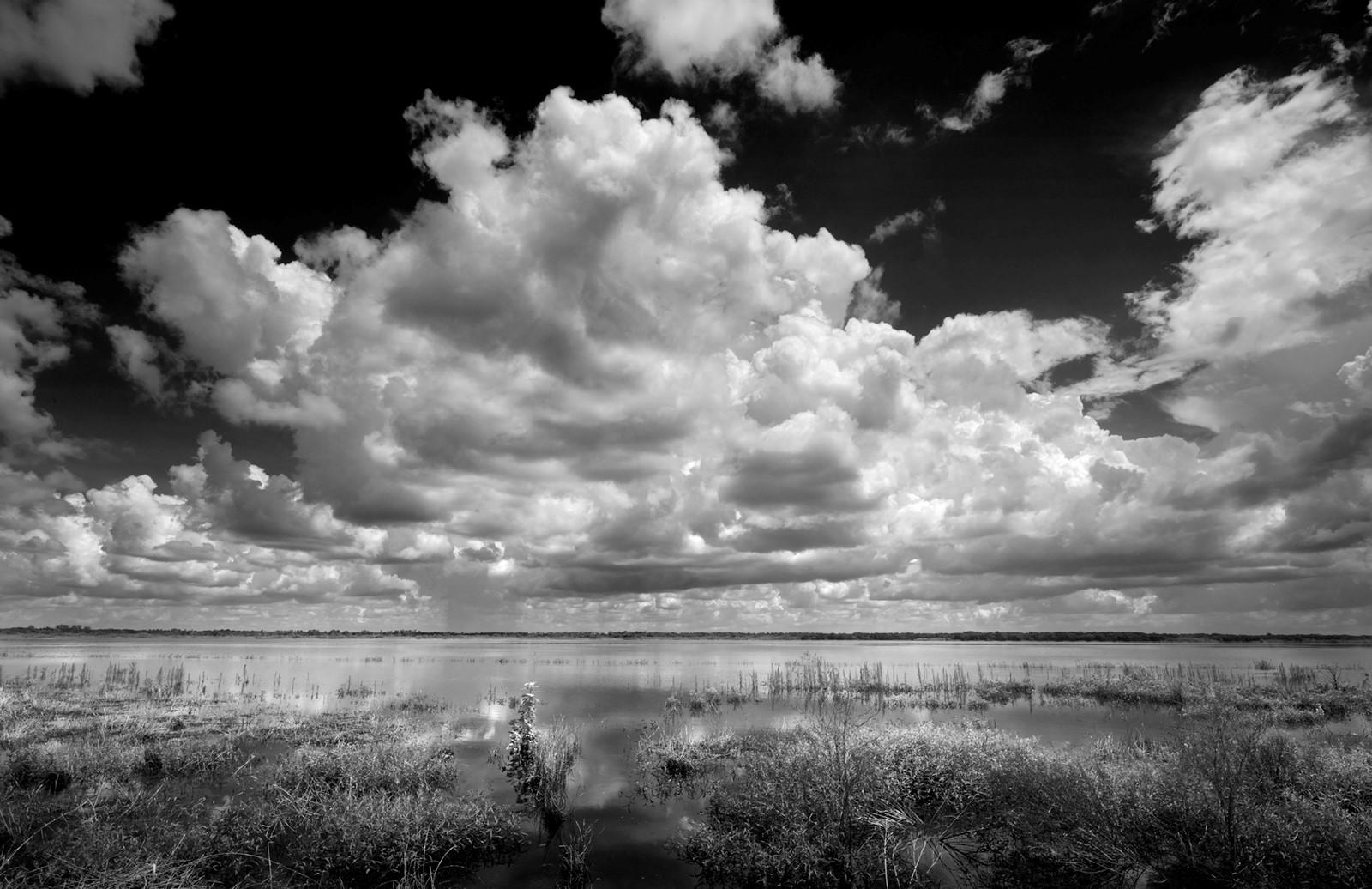 Lake Myakka 1