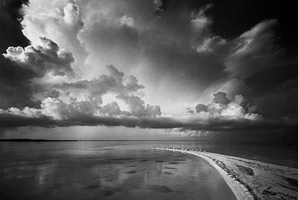 Fakahatchee Strand State Preserve Collection