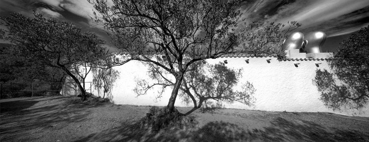 Castor and Pollux Dali's Garden Wall