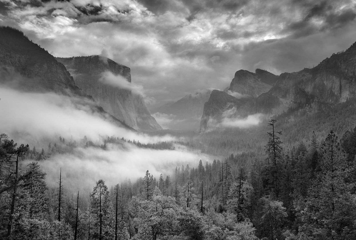 Inspiration Point Fog