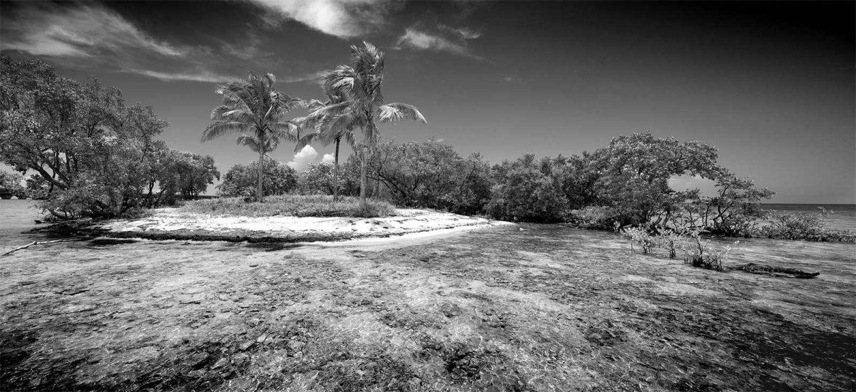 Money Key Island