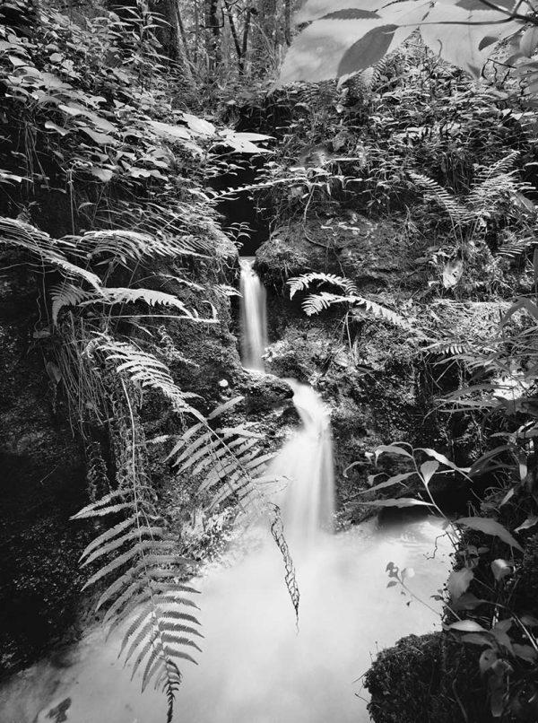 anderson-falls-18×22-N