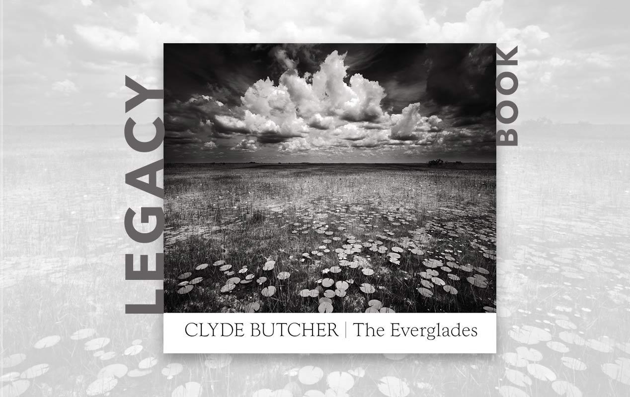 Everglades book