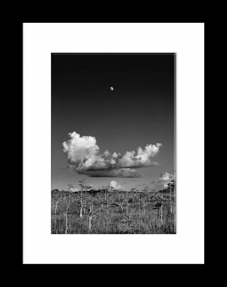 Moon_CalendarArt